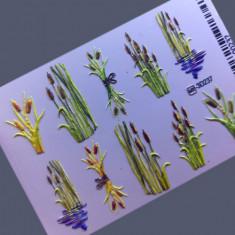AnnaTkacheva,3D-слайдерHT№237 «Цветы. Листья» Anna Tkacheva